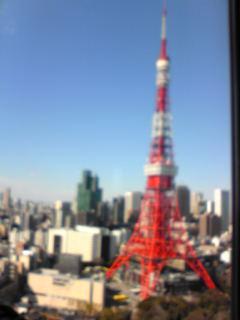 東京タワー全身まる見え