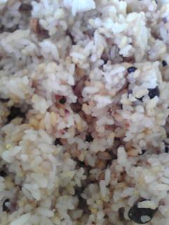 白米2と玄米1