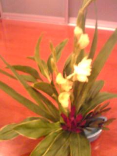 サンクスのお花