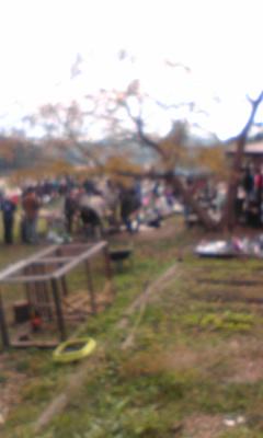 ブラウンズフィールド収穫祭